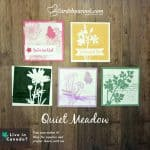 showcases 5 mini cards made with the Quiet meadow bundle by Stampin' Up!
